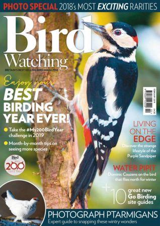 Bird Watching UK – February 2019
