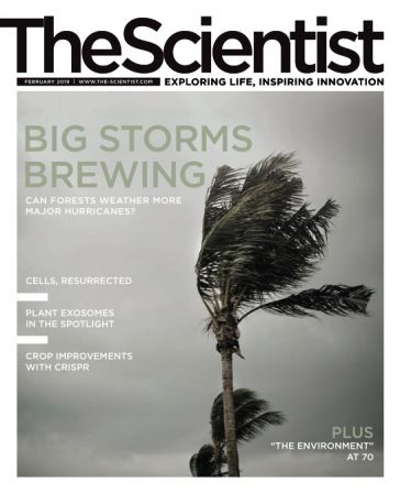 The Scientist – February 2019