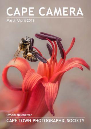 Cape Camera – March-April 2019