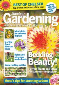 Amateur Gardening – 22 June 2019