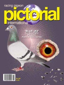 Racing Pigeon Pictorial International – June 2019
