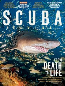 Scuba Diving – July 2019