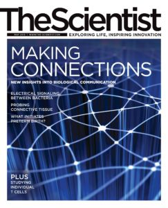 The Scientist – May 2013