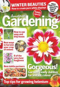 Amateur Gardening – 16 July 2019