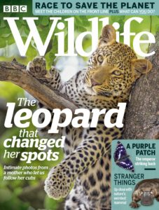 BBC Wildlife – July 2019