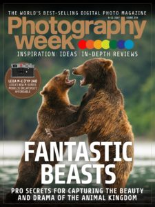 Photography Week – 04 July 2019