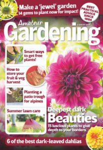 Amateur Gardening – 17 August 2019