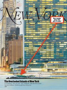 New York Magazine – August 19, 2019