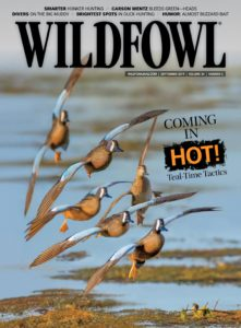 Wildfowl – September 2019