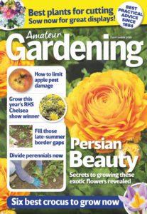Amateur Gardening – 07 September 2019