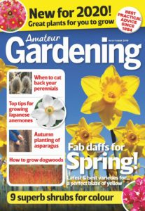 Amateur Gardening – 19 October 2019