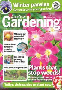 Amateur Gardening – 26 October 2019