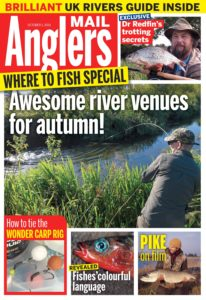 Angler's Mail – 01 October 2019