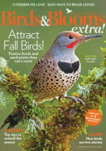 Birds and Blooms Extra – November 01, 2019