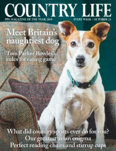 Country Life UK – 23 October 2019