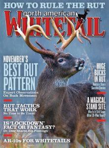 North American Whitetail – November 2019