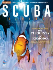 Scuba Diving – November 2019