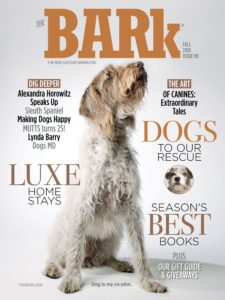The Bark – Fall 2019