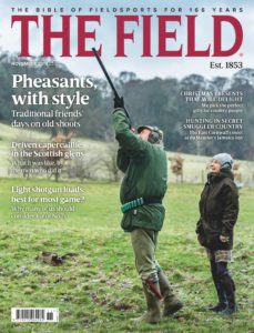 The Field – November 2019