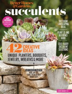 Better Homes & Gardens – Succulents 2019