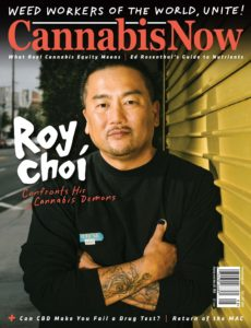 Cannabis Now – Issue 38 – August-September 2019