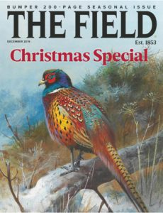 The Field – December 2019