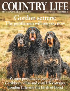 Country Life UK – December 04, 2019
