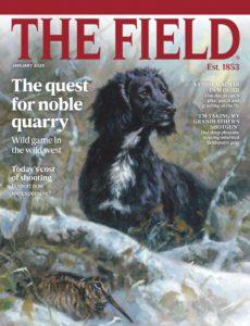 The Field – January 2020