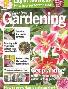 Amateur Gardening – 25 January 2020