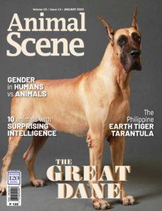 Animal Scene – January 2020