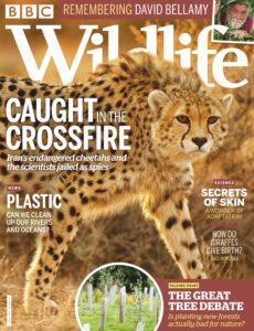 BBC Wildlife – February 2020