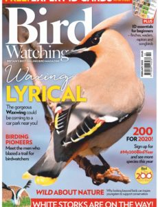 Bird Watching UK – February 2020