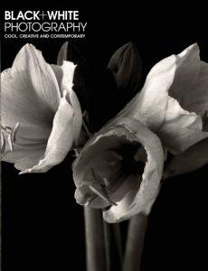 Black + White Photography – February 2020
