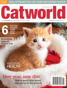 Cat World – Issue 502 – January 2020