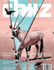Chiiz – Volume 31 – October 2019