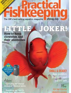 Practical Fishkeeping – March 2020