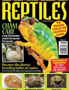 Reptiles – July-August 2019