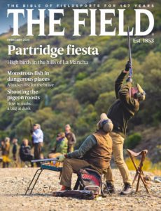 The Field – February 2020