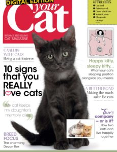 Your Cat – February 2020