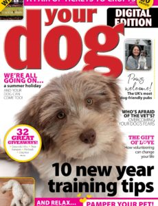 Your Dog – February 2020