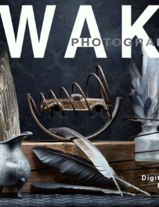 Awake Photography – February 2020