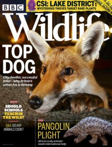 BBC Wildlife – March 2020