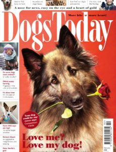 Dogs Today UK – February 2020