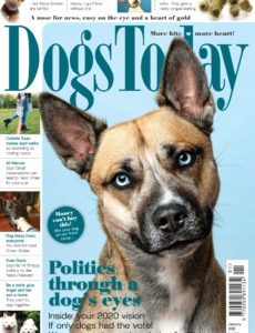 Dogs Today UK – January 2020