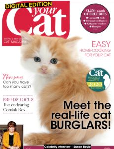Your Cat – January 2020