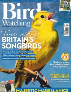 Bird Watching UK – April 2020