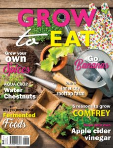 Grow to Eat – Autumn 2020
