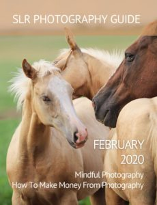 SLR Photography Guide – February 2020