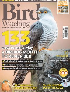 Bird Watching UK – May 2020