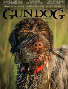 Gun Dog – June-July 2020